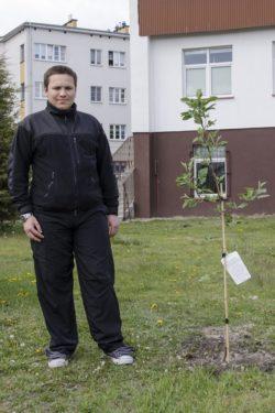 Mężczyzna stoi obok posadzonego drzewka.