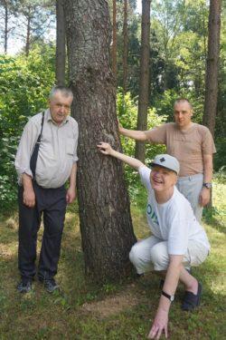 Trzech mężczyzn przy drzewie.