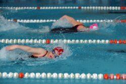 W basenie sportowym - widok dwójki płynących dziewczyn kraulem